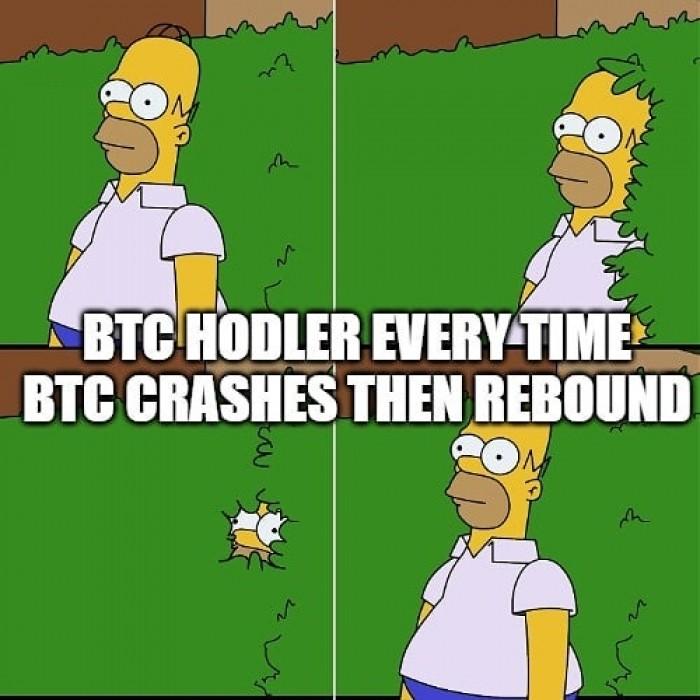 BTC rebound meme